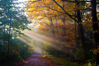 Autumn - De Kaaistoep, Tilburg