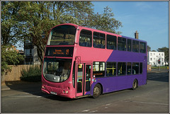 UNO 278, St.James Mill Road (Jason 87030) Tags: uno 278 wright eclipse gemini pink purple decker uni university everyone northampton northants tree county town october lighting sunny 2017 sony alpha ilce nex lens tag a6000 color colour lf52znx sixfields 19