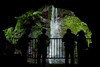 Silhouette (Yorkey&Rin) Tags: 2017 7月 em5markii freshgreenleaves japan july kanagawa momiji olympus olympusmzuikodigitaled1250f3563ez people rainyseason rin silhouette ua010012 waterfall yugawara シルエット もみじ゙ 滝 湯河原 梅雨 万葉公園