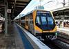 Sydney Trains - Platform 17, Sydney Central and Millennium Set M9/M8 heads for the City Circle (john cowper) Tags: sydneytrains centralrailwaystation suburbanrailways suburban commuters railwaystation trainstation citycircle millenniumset m8m9 transportfornsw sydney newsouthwales