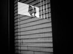Untitled (Dan-Schneider) Tags: streetphotography street schwarzweiss silhouette blackandwhite bw reflection urban monochrome mirror mood