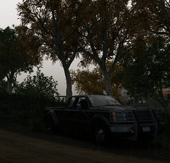Under the trees (Brandon ProjectZ) Tags: watchdogs chicago city windy rain overcast roads natural lighting trees