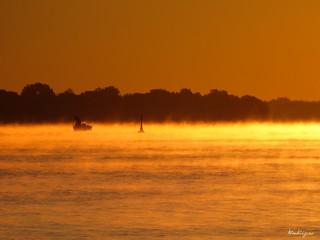 Autumnal Mist - Brume automnale
