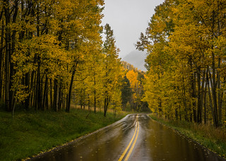 Fall Rain in the Land of Aspens