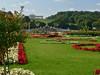 53 Schonbrunn Garden (Mike Miley) Tags: flowers garden gloriette schonbrunnpalace vienna