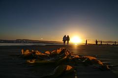 I Saw the Colors... (Explored) (KC Mike Day) Tags: pacific coronado california beach glisten waves crashing people seaweed