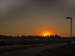 West Eugene Wetlands (piranhabros) Tags: orange oregon westeugene bikepath wetlands sunset