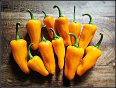 Chilli Orange (Jason 87030) Tags: chilli pepper habenero orange yellow vegetable grown 11 stilllife color colour ilce sony food grub hot spicy heat arrangement