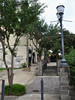 Vicksburg - Sidewalk (Drriss & Marrionn) Tags: bluestrail2014 mississippi usa outdoor deltablues vicksburg riverfront tree road building city buildings lantern sidewalk cityscape
