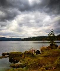 One of my favorite lakes, Nordmarka, Norway 🍁 (evakongshavn) Tags: nordmarka visitnorway norway norge landscapephotography landscape landskap landschaft natur nature naturbilder naturaleza naturephotography naturphotography water waterscape lakes lake ngc