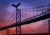 Mothman on the Bridge (mysteries illustrated) Tags: cryptozoology silverbridge johnkeel mothman pointpleasant