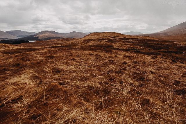 040 - Szkocja - Loch Lomond i okolice - ZAPAROWANA_