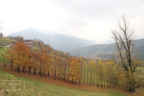 """Trentino Alto Adige • <a style=""""font-size:0.8em;"""" href=""""http://www.flickr.com/photos/104879414@N07/37512368564/"""" target=""""_blank"""">View on Flickr</a>"""