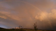 Radiant Rainbow (LadyRaptor) Tags: rainbow sky clouds cloudy autumn evening sony xz premium