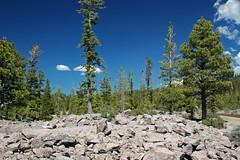Chaos Jumbles Landslide (upper Holocene; Lassen Volcano National Park, California, USA) 5 (James St. John) Tags: chaos jumbles landslide avalanche deposit lassen volcano volcanic national park california rhyodacite lava rock rocks