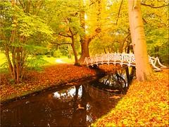 Autumn in the Eutin Castle Park (Ostseetroll) Tags: deu deutschland eutin geo:lat=5413554380 geo:lon=1062064460 geotagged schleswigholstein schlosspark herbst herbstfarben autumn autumncolours wasser water brücke bridge spiegelungen reflections