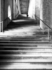 Street_Neue-Pinakothek-München-001 (asrgbg) Tags: altepinakothek street treppenhaus staircase munich
