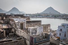 Rajasthan - Pushkar - City view