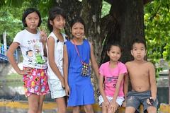 girls, boy and a big tree (the foreign photographer - ฝรั่งถ่) Tags: four preteen girls boy khlong thanon portraits bangkhen bangkok thailand nikon d3200