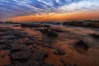 Ray Rocks
