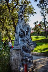 Dragon in the garden 1373 (_Rjc9666_) Tags: art bombaral budhaseden colors esculture estatua extremadura garden jardim nikkor35mm18 nikond5100 objeitos places portugal quintadosloridos statue travel turismo tourism ©ruijorge9666 carvalhal leiriadistrict pt dragon dragão china chinese 1953 1373