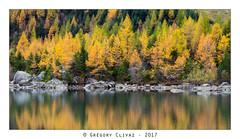 2017.10.21_Derborence-108b (Grégory Clivaz Photographie) Tags: derborence clivaz grégory