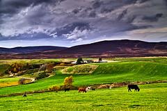 Farm on the Achnauillt Road (Fr Paul Hackett) Tags: farm mountain field cows landscape clouds