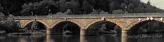 Marktheidenfeld-Brücke