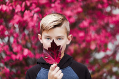 (Rebecca812) Tags: boy child leaf fall autumn scarlet red magenta blondhair blueeyes hoodie headandshoulders eyecontact portrait people canon tween growth rebecca812 colorful