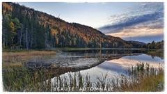 Voyage en Gaspésie (clamato39) Tags: gaspésie provincedequébec québec canada eau water autumn automne nature landscape