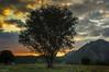 Comienza otro día (Jotha Garcia) Tags: junco asturias españa spain principadodeasturias mountain amanecer sunrise tree paisaje landscape jothagarcia nikond3200 comienzaotrodía nikkor180550mmf3556 comunidadespañola septiembre september verano summer 2017 sky nubes clouds contraluz backlighting nwn