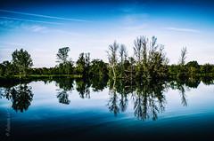 Déjà tout écrit (Fabrice Le Coq) Tags: paysage bleu ciel eau lac étang arbre vert nature fabricelecoq