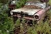 DSC_0974 v2 (collations) Tags: ontario mcleansautowreckers autowreckers wreckers automobiles autos abandoned rockwood derelict junkyards autograveyards carcemeteries