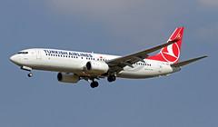 TC-JVE LMML 18-10-2017 (Burmarrad (Mark) Camenzuli) Tags: airline turkish airlines aircraft boeing 7378f2 registration tcjve cn 42006 lmml 18102017