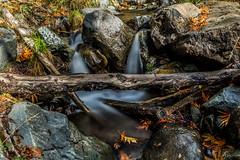 Caledonia Trail (65) (Polis Poliviou) Tags: nicosia autumn life polispoliviou polis poliviou πολυσ πολυβιου cyprus cyprustheallyearroundisland cyprusinyourheart yearroundisland zypern republicofcyprus κύπροσ cipro кипър chypre chipir chipre кіпр kipras ciprus cypr кипар cypern kypr ©polispoliviou2017 europe fall naturephotography forestphotography heritage mediterranean morning 2017 caledoniawaterfalls troodosmountains kalidoniawaterfalls naturepics forest tree trees trekking walking hiking nationalpark nationaltrail leaf leaves water waterfall waterfalls platanus platanustree planetree planetrees caledoniafalls naturetrail naturepath pinetree love relax relaxing longexposure