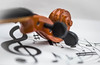 """""""Macro Mondays""""- """"Member's Choice - Musical Instruments"""" (Christel Schoepen) Tags: macromondaysandmemberschoicemusicalinstruments macroviool violine muziek music"""