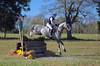 First Place CIC1* - Holly Payne Caravella and CharmKing (Tackshots) Tags: eventing horsetrials crosscountry morvenpark leesburg virginia hollypaynecaravella jumping equestrian riding horse
