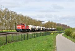 DBS 6502 Willemsdorp Dordrecht (Peter Boot) Tags: nederland goederenvervoer dbs6502 willemsdorp dordrecht dieselloc trein silowagens uacns evs ketelwagens zacns onrail uncode 2448 zwavel cargo