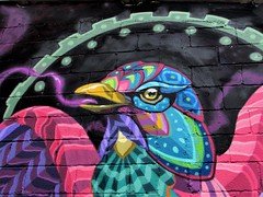 Big bird (thomasgorman1) Tags: bird blocks wall paint painting art public urban city mexico canon neighborhood colors colorful street streetphotos