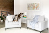 2 Sloan chairs in Ecru (maddierosewhite) Tags: 2 sloan chairs monochromatic plush ecru matte black legs dogs blanket living room