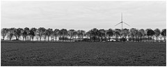 Dutch Design (Alfred Grupstra) Tags: nature blackandwhite field agriculture farm ruralscene landscape environment landscaped industry plowedfield windturbine meadow nonurbanscene nopeople technology outdoors turbine inarow electricity