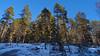 New snow on the rocks (heikki.nylund) Tags: newsnow ontherocks jynkänmäki kuopio finland