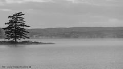 20171107003200 (koppomcolors) Tags: koppomcolors glafsfjorden värmland varmland sweden sverige scandinavia
