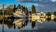 Sun 'shine' (Christie : Colour & Light Collection) Tags: river boats yachts boatsheds boathouse moored mooring shine outdoors boating alouetteriver riverreflections reflection reflections boatreflections pittmeadows bc canada peaceful serene water dock sky clouds mast