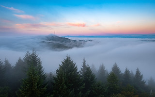 Autumn morning fog