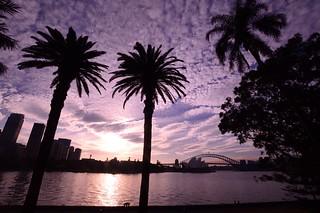 Sydney__wonderful sunset