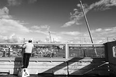 Peeking (martinyasmine) Tags: stockholm sweden urban city monochrome construction street man funny comical voyeur peeking