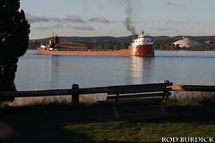 keb10417depPI_rb (rburdick27) Tags: kayeebarker interlakesteamshipcompany lakesuperior presqueislepark marquette fallcolors fall scenicmichigan