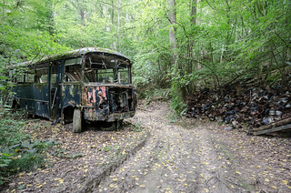 Bus in the Wood