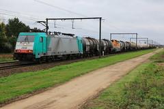 2838 Sherenhelderen 11-10-2017 (Break302) Tags: reeks28 lineas lijn34 traxx cargo ketelwagens basf